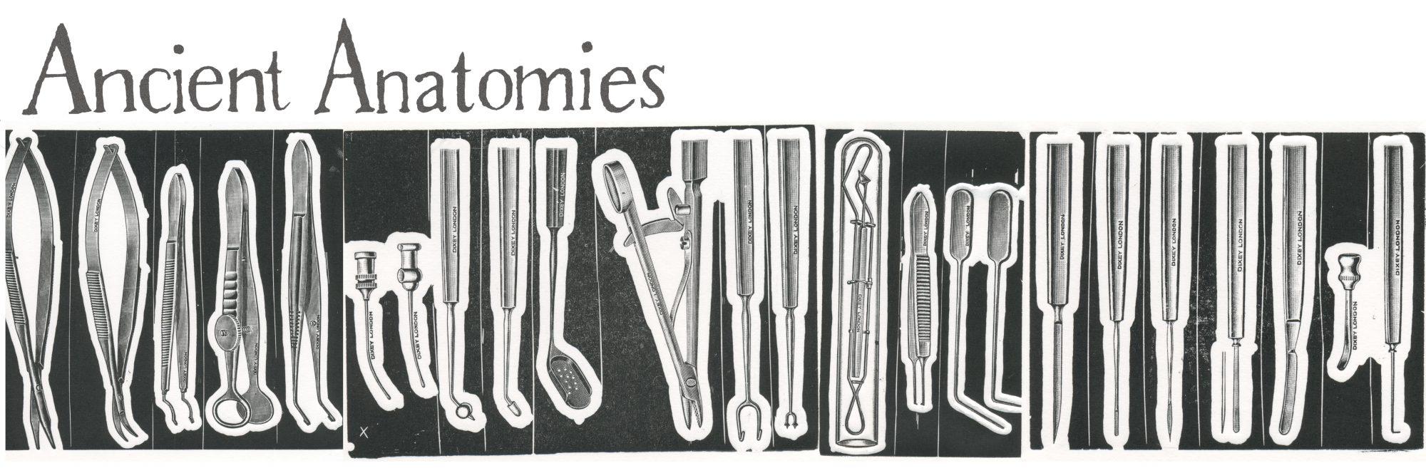 https://ancientanatomies.files.wordpress.com/2017/10/cropped-tester-title-4.jpg